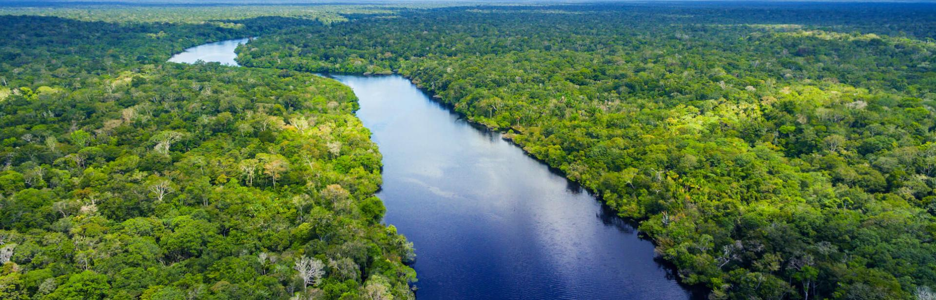 The Amazon river winding through a green forest, with a bright blue sky above it.